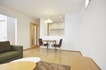 S HOUSE case001